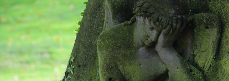 begraebniswald-01-schloss-luetetsburg-header