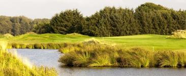 golfplatz-rough-schloss-luetetsburg