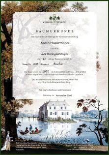 luetetsburg_baumpatenschaft_baumurkunde_vorschau_neu